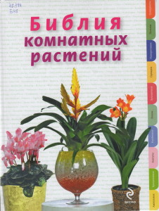 Цветы0007